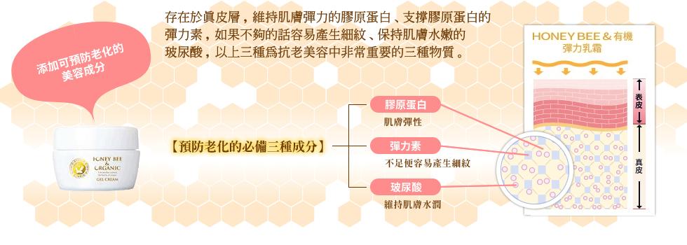 三種為抗老美容中非常重要的三種物質。
