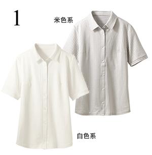 针织衬衫(短袖)