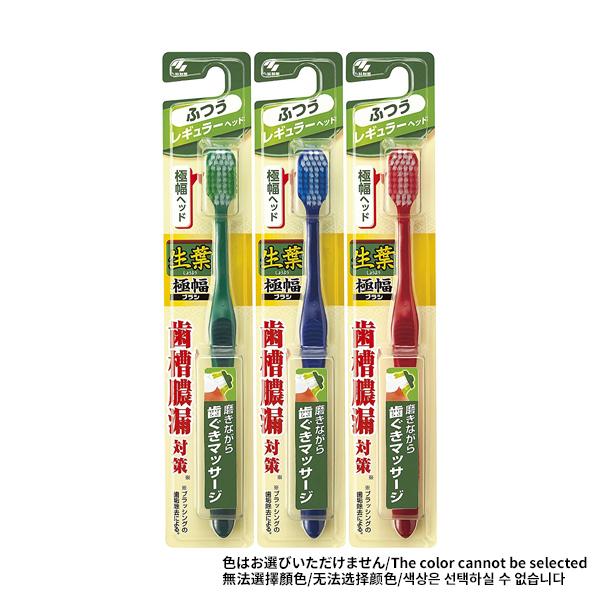 小林製藥 生葉 極寬頭牙刷 標準