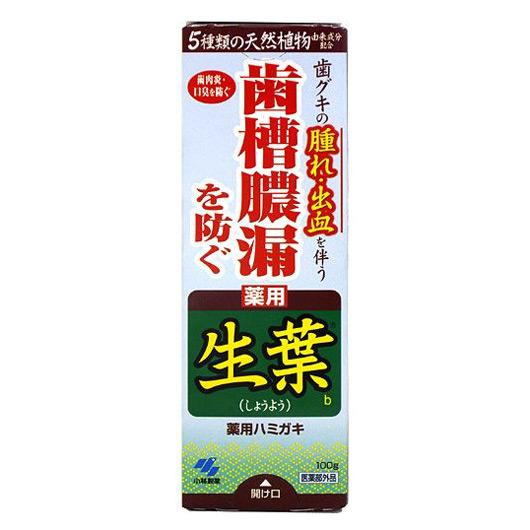 小林製生葉b 牙膏 100g/ 護齦系列