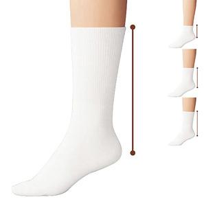 [cecile] White Family Socks, Same Type 3-Pair Set / New Arrival Spring Summer 2020, Inner