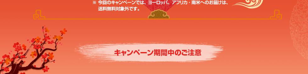 JPY 3,000以上のご注文で、日本からの送料が無料!