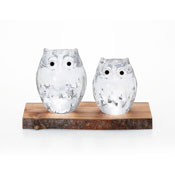 Parent & Child Owl (Clear)