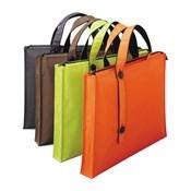 Carry Bag [2WAY Type] Standard