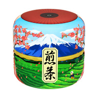 Mount Fuji Reversible Can, Sencha
