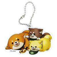 Chuken Mochi Shiba, Acrylic Ball Chain Key Holder (Okaka & Anko & Manako)