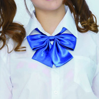 School Ribbon PPR-03 (Navy)