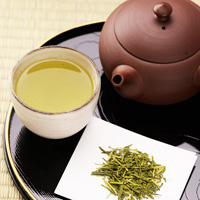 常照园 捡宇治茶 茎茶 100g