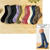 [Cecile] Family Knee-High Socks, Same-Color 3-Pair Set / 2018 Winter Lineup, Inner