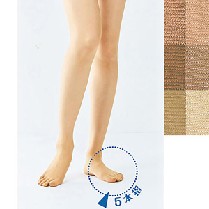 [Cecile] 5-Toe Pantyhose / New Arrival Summer 2020, Inner