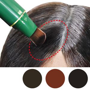Hidaka Point Haircolor Gray Hair Concealer 3-Piece Set