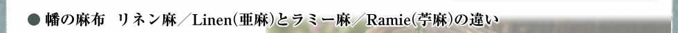 幡の麻布リネン麻/Linen(亜麻)とラミー麻/Ramie(苧麻)の違い
