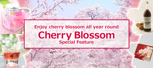 Enjoy cherry blossom all year round / Cherry Blossom Special Feature